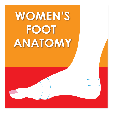 WOMEN'S-FOOT-ANATOMY-image-home-page